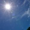 夏の陽光!