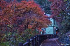 紅葉に映える郵便局。。