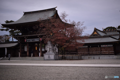 初参拝の寒川神社