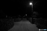 竹富島の夜2