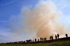 鵜殿の葦焼き2017-5