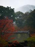 入秋の三井寺 2