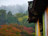 入秋の三井寺