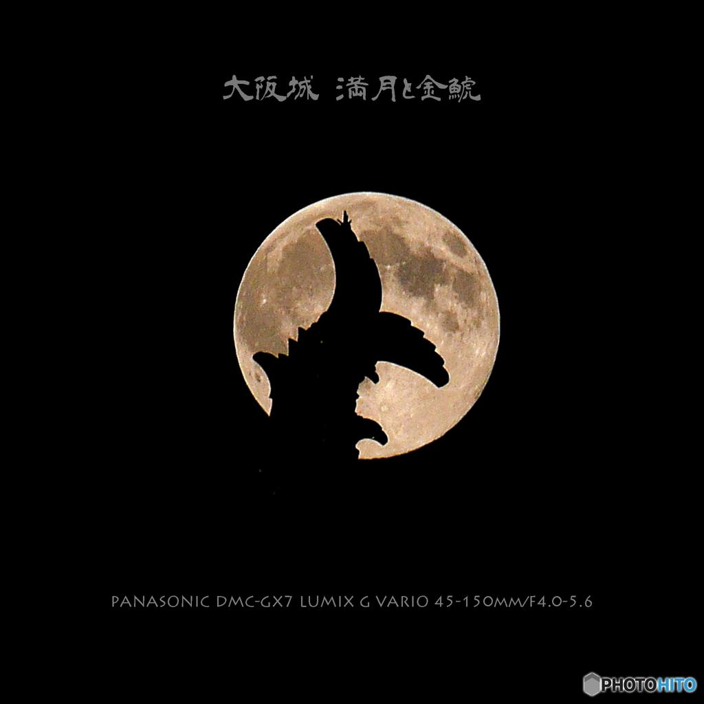 大坂城 満月と金鯱
