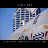 PEACE SKY