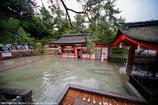 水の国、日本