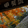 忍の里に秋