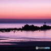 奈多海岸の夜明け(2)