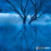 湖上の樹(2)