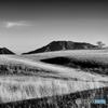 冬晴れの丘