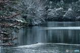 近所の池にて #2