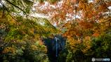 福貴野の滝(秋)