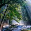 夏の菊池渓谷 #1