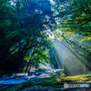 夏の菊池渓谷 #3