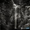 福貴野の滝 モノクロ#1