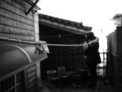 韓国・ソウル #003 洗濯ヒモと洗濯ばさみ