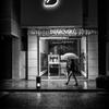 Umbrella under the Black Swan