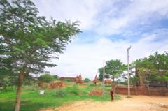 仏教遺跡群を歩く。