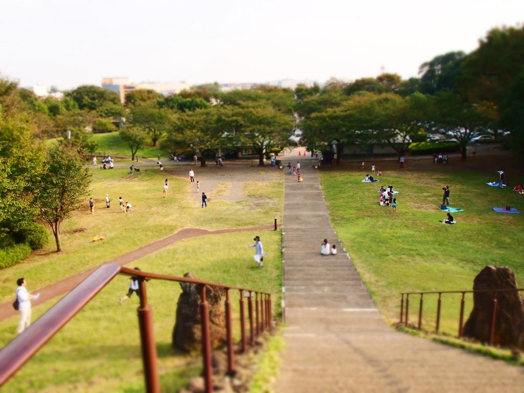 休日の公園