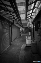 Yokosuka Street Snap #5