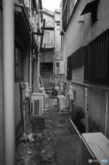 Yokosuka Street Snap #14