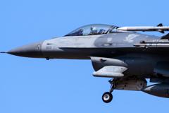 パイロットとミサイル