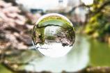 緑水晶 千鳥ヶ淵