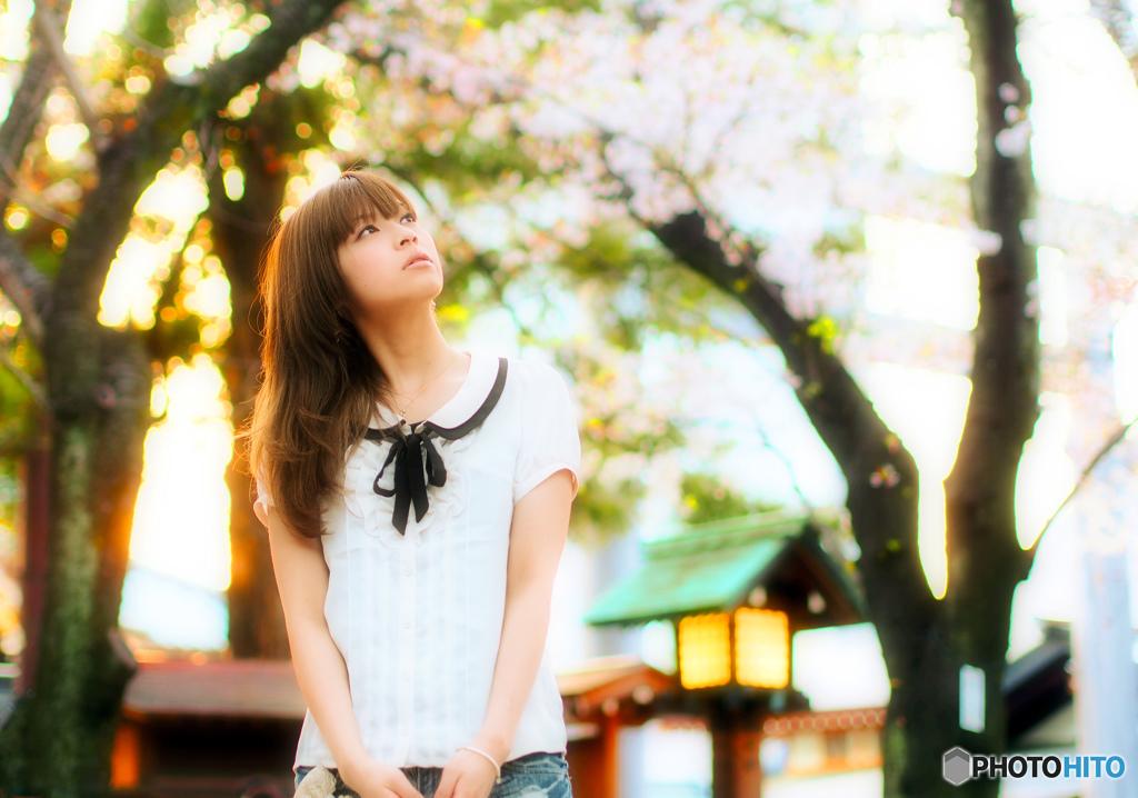 桜の季節の少女