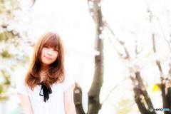 桜と季節と少女