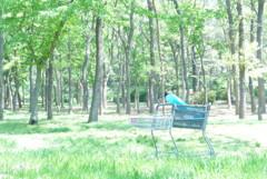 森にAEON (1)