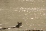 漁船一瞬#1 ターンの予感