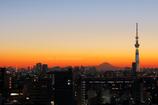 夕景から夜景へ 今年2月初め頃の新小岩にて
