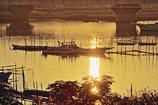 行徳橋下流左岸より #3