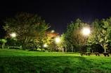 夜の公園で・・・#4