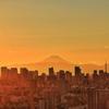 東京山脈と富士山 高さ115Mからの夕景#2
