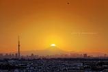 夕景 今年2月初めの松戸にて