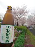 小松菜川が、小松菜発泡酒を飲んだ!
