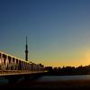 鉄・夕方2 鉄橋の輝き