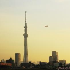 CANON Canon EOS 60Dで撮影した(『第38回隅田川花火大会』が始まるまで・・・#1 この辺りに花火予定)の写真(画像)