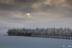 暮れゆく雪原