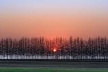 柔らかな夕陽