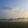 朝靄に霞む
