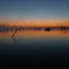 印旛沼morning