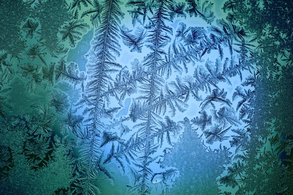 窓ガラスに咲いた霜の華