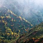 NIKON NIKON D300で撮影した(草津白根山 (3))の写真(画像)