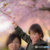 桜の下で変顔