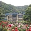 ♪薔薇~鎌倉文学館