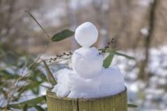 雪だるま@清里 吐竜の滝