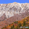 雪の大山と紅葉のコラボ