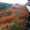 京都 清水寺5-2「紅葉」